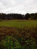Продам земельный участок под строительство Ревда