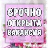 Дневная подработка в интернет-магазине Байкалово