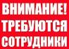 Рекламный сотрудник в интернет- магазин. Байкалово